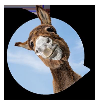 Hörtest machen und Karten für den Zoo erhalten
